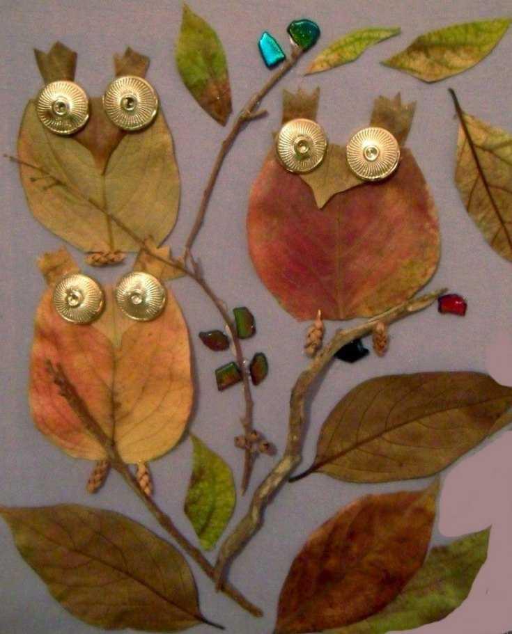 рисунки из листьев сова вас есть специальный
