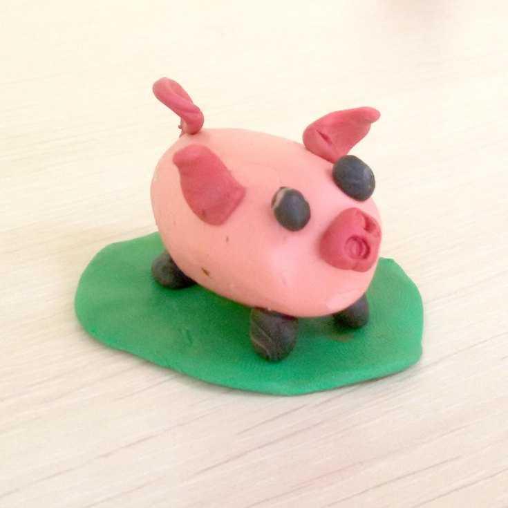 свинка из пластилина картинки