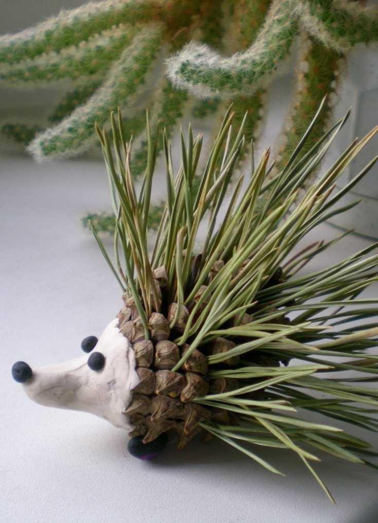 Поделки из шишек — интересные варианты применения шишек для украшений и игрушек (85 фото)